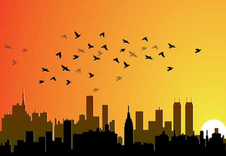 vector city background with flying birds Stock Vector - 10825773