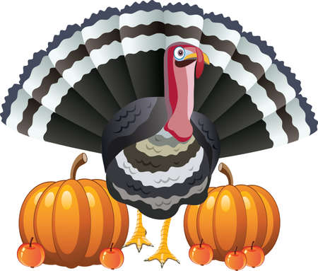 large group of objects: vector design of turkey, pumpkins and apples for thanksgiving day