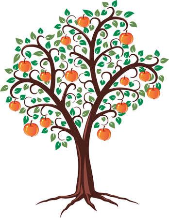 albero da frutto: disegno vettoriale di melo con frutti