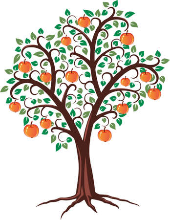 arbol de manzanas: vector de dise�o de �rbol de manzana con frutas