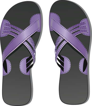 Pair of leather flip flops Vector