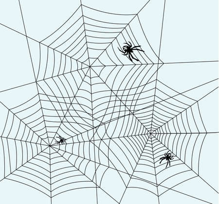 cartoon insect: Illustration of spiders and webs