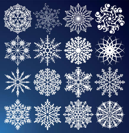 vector set of 16 snowflakes Vector