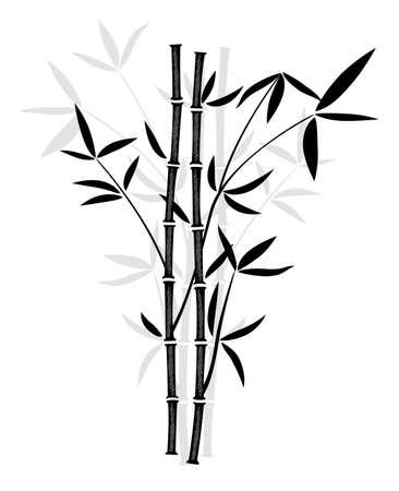 japones bambu: vector de negro y blanco ilustración de bambú