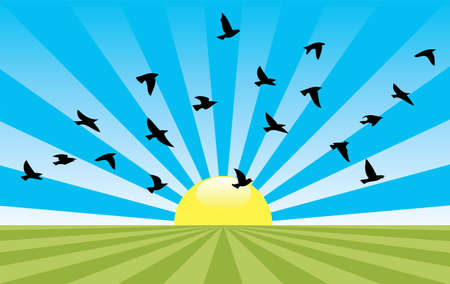 vector abstract rural landscape with rising sun and flying birds Vector