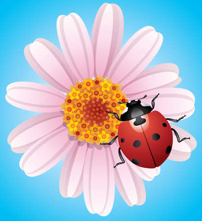 gerber: vector illustration of flower and ladybird