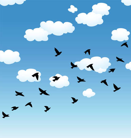 birds silhouette: vector flock of flying birds and clouds in the sky