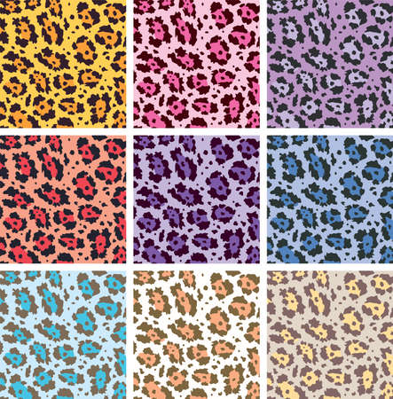 vector colorful animal skin textures of leopard Vector