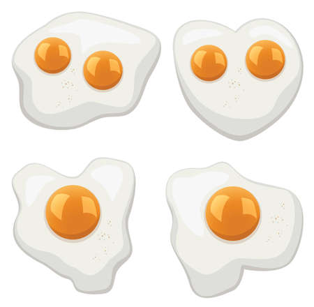 vector illustration set of fried eggs