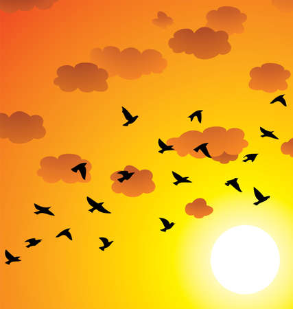 birds flying: vector flock of flying birds, clouds and bright sun at sunset or sunrise Illustration