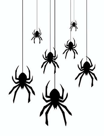 spider web: vector illustration of hanging spiders