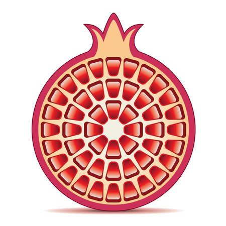 pomegranate juice: illustration of pomegranate