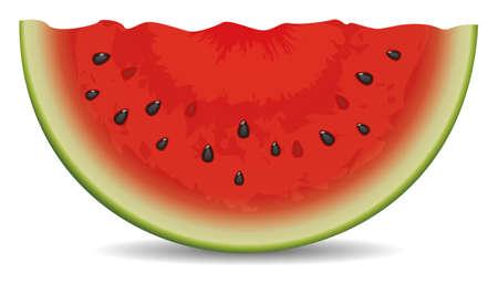 watermeloenplak Vector Illustratie