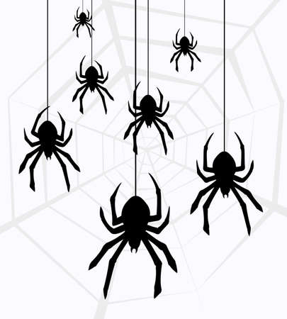 cartoon spider: illustration of hanging spiders and web