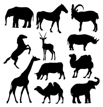 large group of animals: silhouettes of elephant, horse, goat, antelope, giraffe, rhinoceros, camel and cow