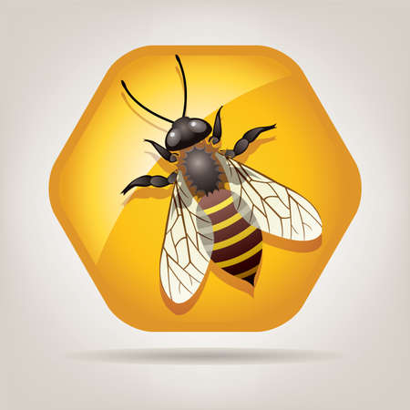 honeybee: symbol of working bee on honeycell Illustration