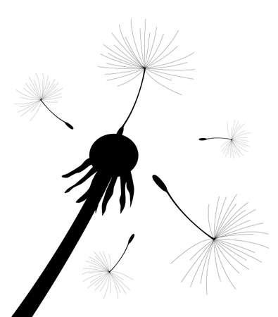 ilustración vectorial de las semillas de diente de león sopla en el viento