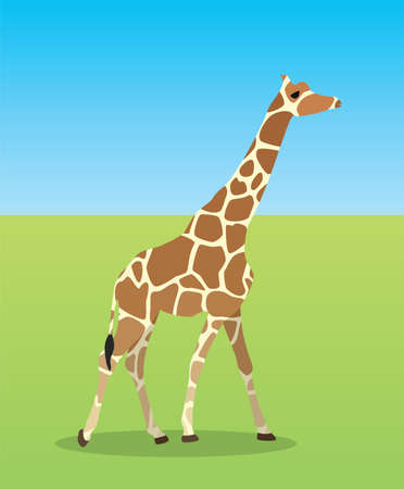 vector illustration of giraffe in savannah Stock Vector - 15908432