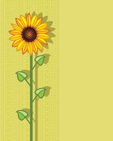 sunflower drawing: vector sunflower background Illustration
