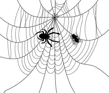 mosca caricatura: ilustración vectorial de araña, tela y una mosca atrapada