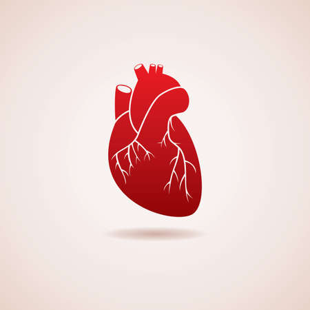 red human heart icon