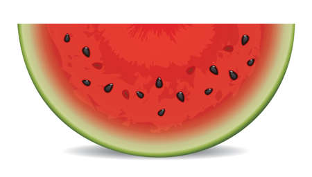 vector watermelon slice on white background