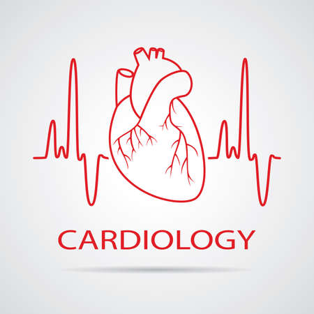 human heart medical symbol of cardiology Vector