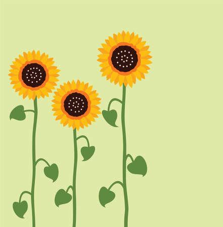 vector sunflower summer background Vector