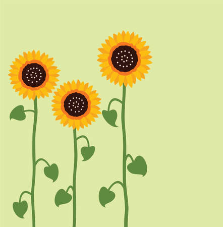 sunflower drawing: vector sunflower summer background
