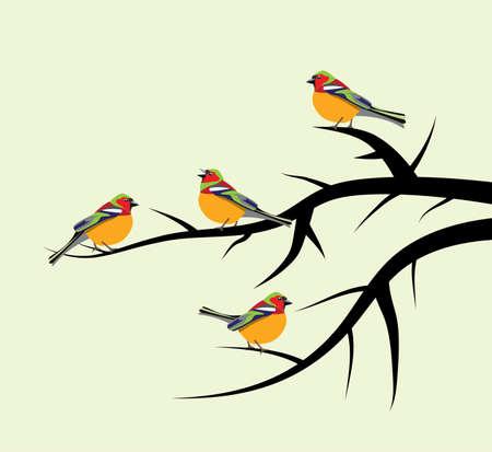 vector aves en ramas de árbol