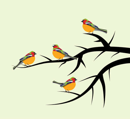 vector birds on tree branches Vector