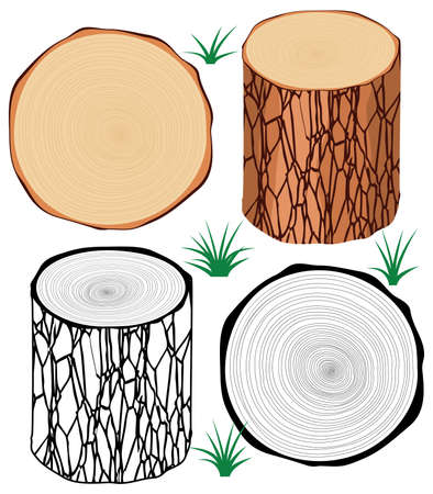 wood cross section: vector set of tree logs
