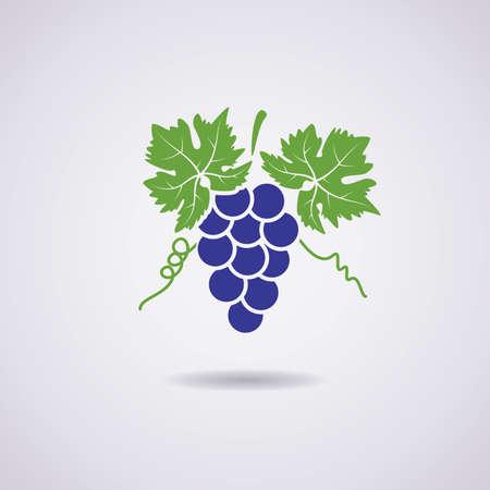 Icona vettore di uva Archivio Fotografico - 41061756