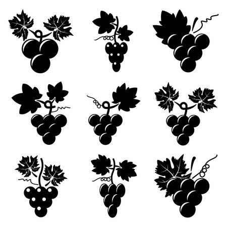 grapes on vine: vector black and white icons of grapes