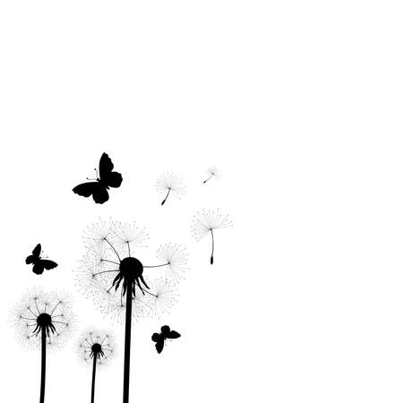 vector illustration of dandelion seeds blown in the wind