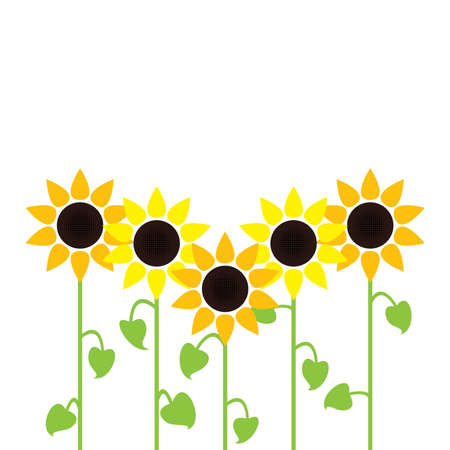 sunflowers: vector sunflower summer background