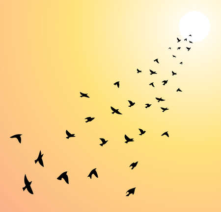 birds in flight: vector flock of flying birds towards bright sun