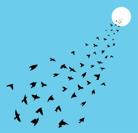 bandada pajaros: Vector rebaño de muchas aves que vuelan hacia el sol