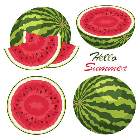 vector watermelon background set