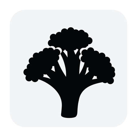 diet food: vector black and white icon of broccoli as healthy organic food for vegetarian diet Illustration