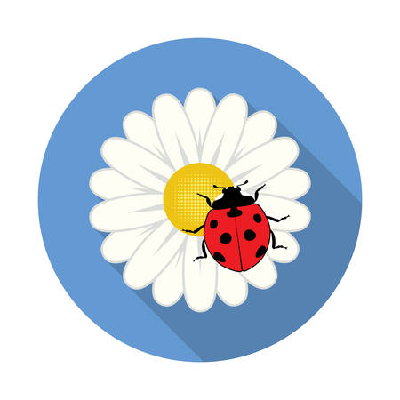 ladybird: vector red ladybird on a camomile flower Illustration