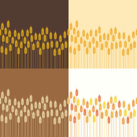 vector collection of seamless repeating wheat or rye field background patterns, abstract agricultural ornament for harvest illustration