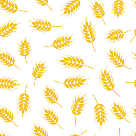 vector seamless wheat or rye pattern, abstract agricultural  yellow ornament on white background