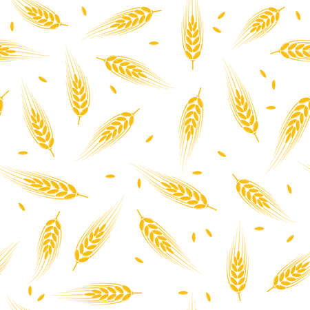 vector seamless wheat, barley or rye background pattern, abstract agricultural yellow ornament on white background with crop harvest ears and wheat, barley or rye seeds