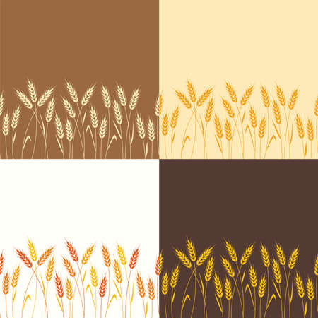 vector collection of seamless repeating wheat backgrounds Illustration