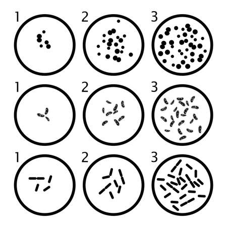 agar: vector bacteria growth stages. black bacterium cells in petri dishes isolated on white background Illustration
