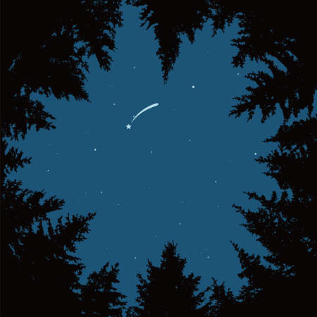 vector background of blue night sky with stars, comet or falling star and dark forest trees. circle of black pine trees forming copyspace