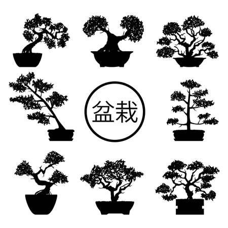 Black and white bonsai trees  in pots with bonsai hieroglyph.