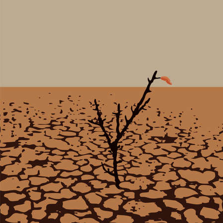 vector illustration of a lonely tree in dry desert land. soil damage from drought. warming of dry land illustration