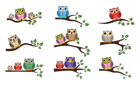 Colorful owl sitting on tree branch icons isolated on white